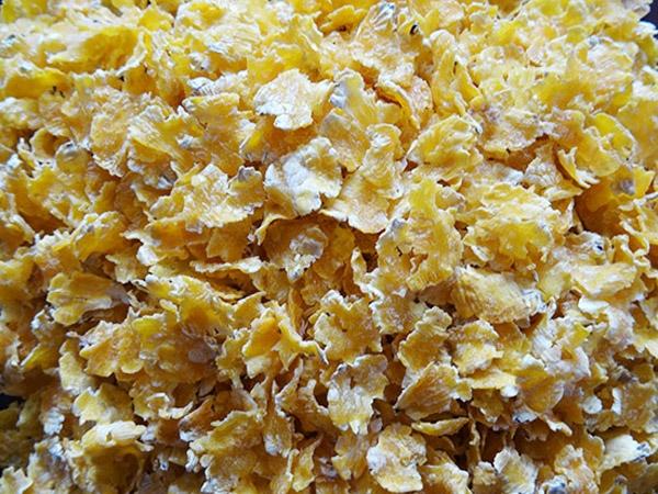 玉米压片样品